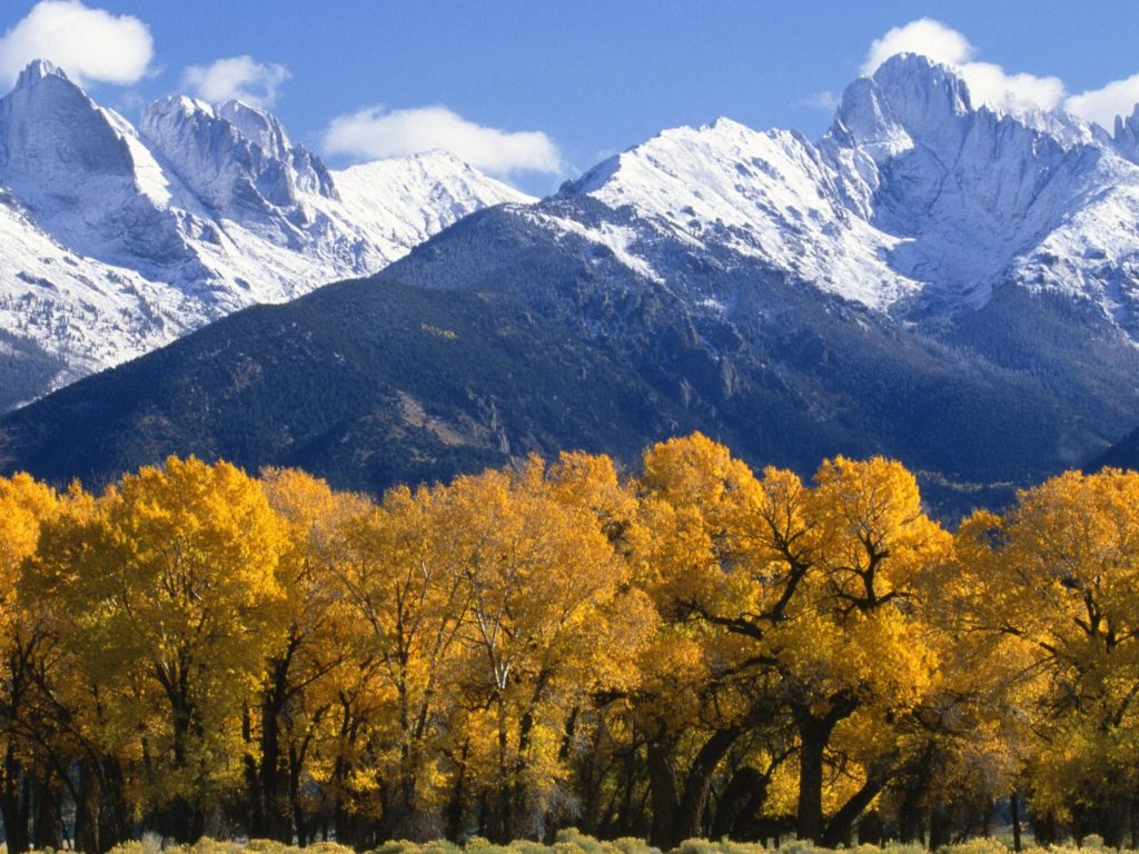 Fall And Autumn Wallpaper Landscape Autumn Trees With Yellow Leaves Snow Capped