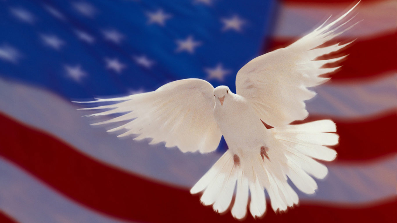American Flag Wallpaper Iphone X American Flag And White Dove Of Peace Hd Wallpapers For