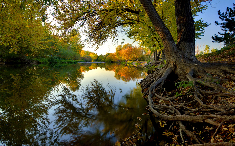 Hd Fall Wallpap Autumn Boise River Usa Beautiful Desktop Wallpaper Hd