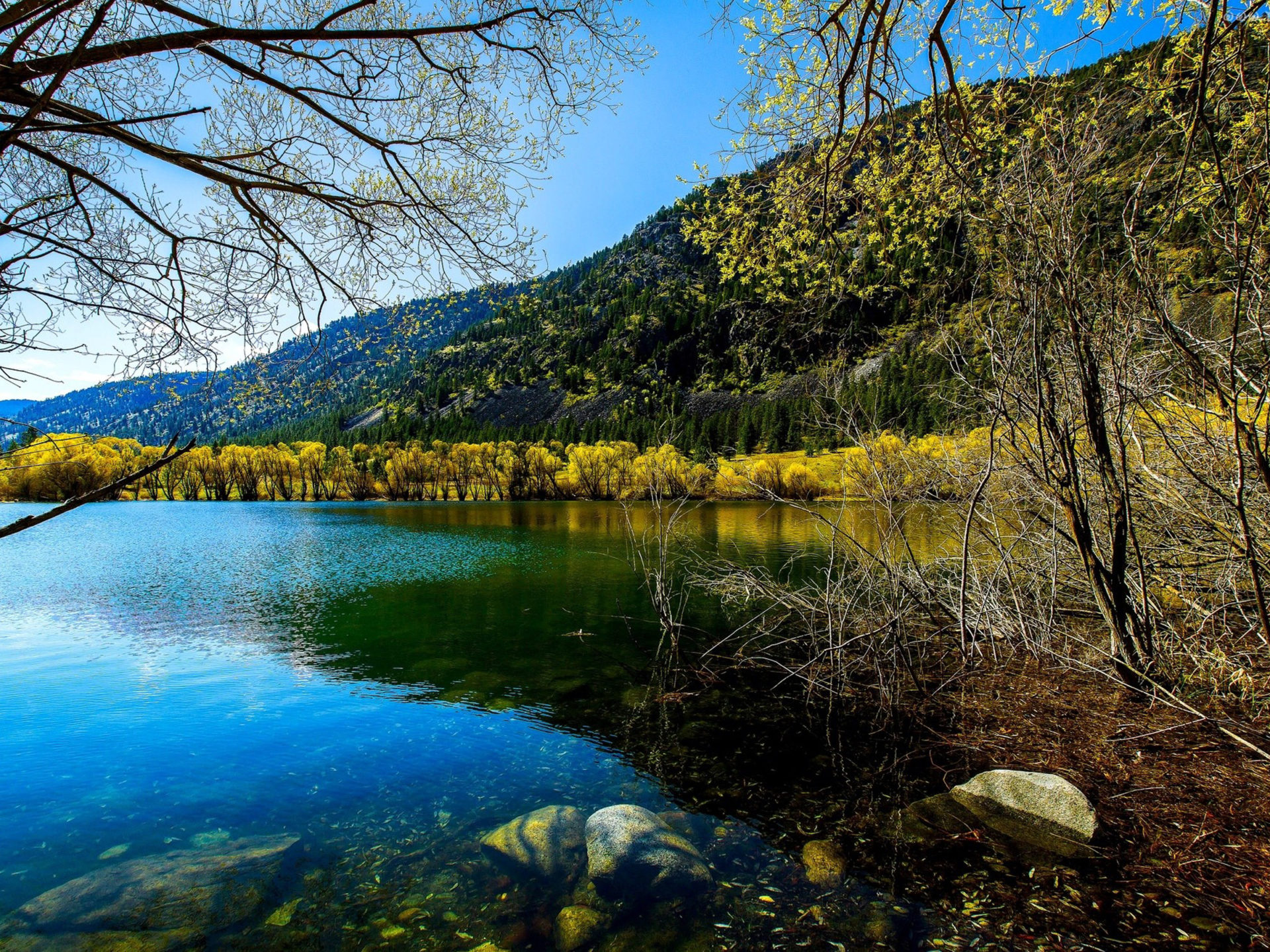 Fall Lock Screen Wallpaper Fall Lake Stones Trees With Yellow Leaves Hills With