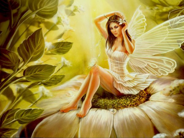 Women with Butterfly Wings Art