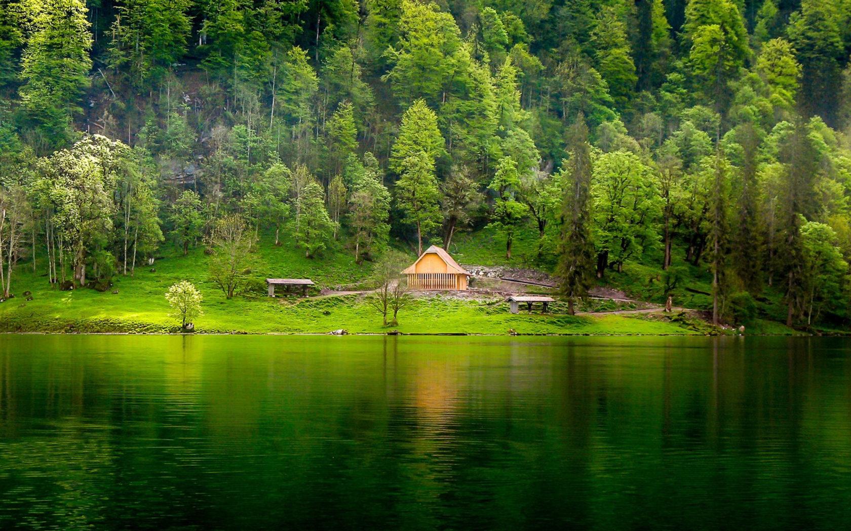 High Resolution Wallpaper Fall Leaves Green Lake Wooden House Pine Forest Meadow Hd Desktop