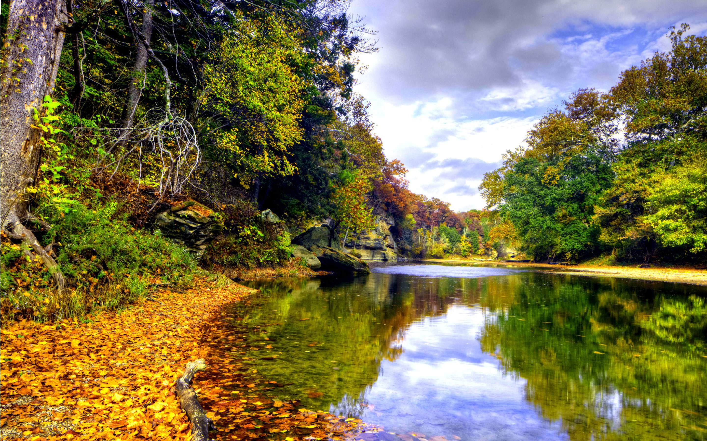 Fall Wallpaper And Screensavers For Free Landscape Autumn Mountain River Mirna Deciduous Forest In