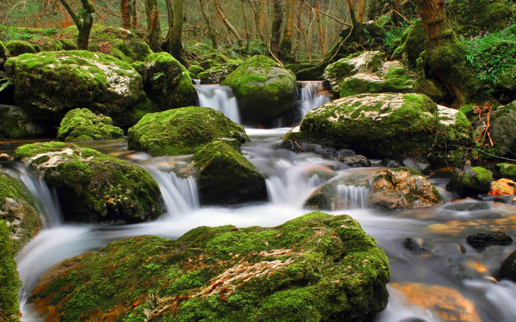 Free Fall Wallpaper 1920x1080 Nature Stream Of Clear Water Flowing Between Rocks Moss