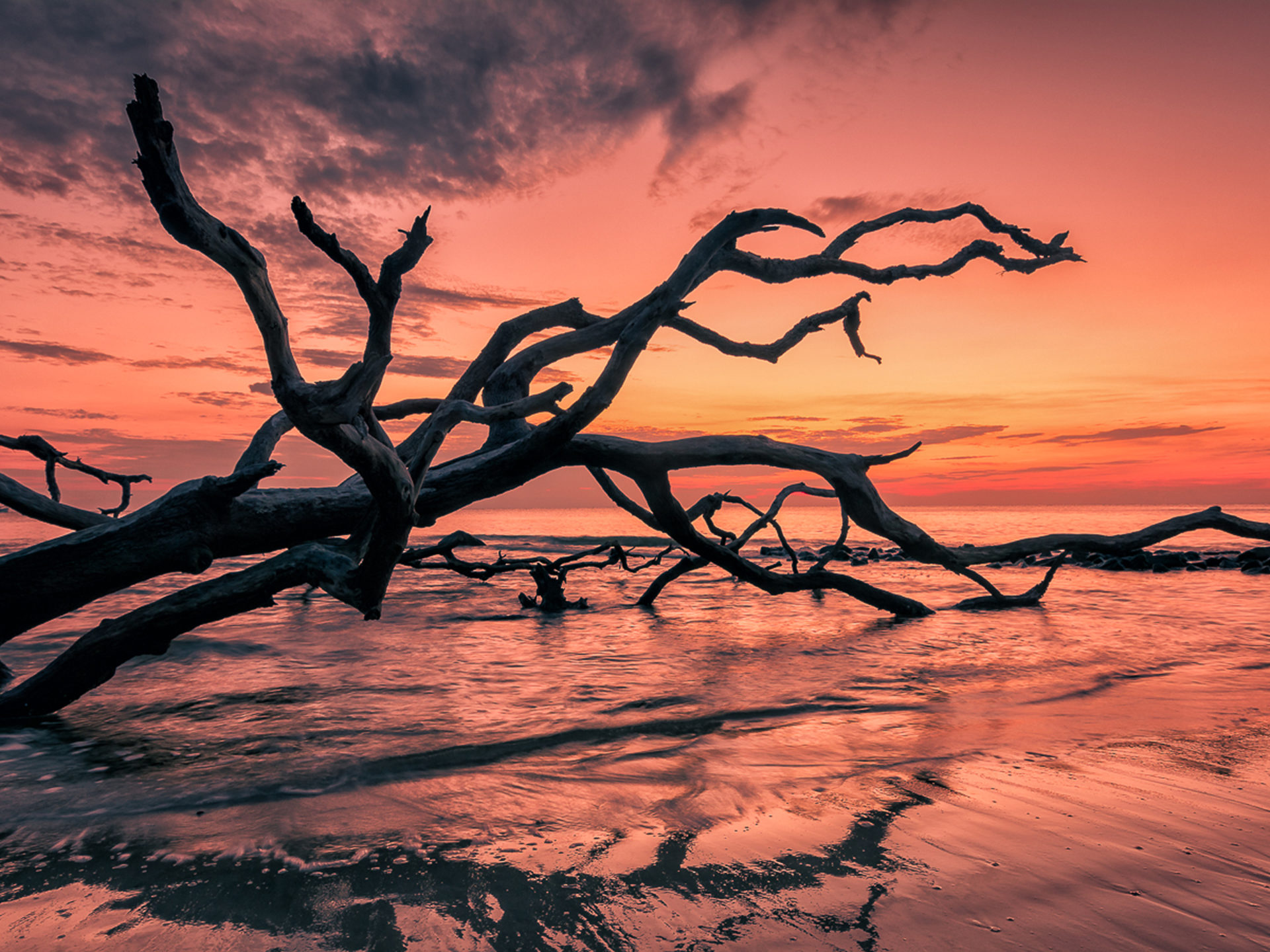 Awesome Hd Wallpapers For Pc Sunset Red Sky Sea Beach Cial Tree Branches Beautiful Hd