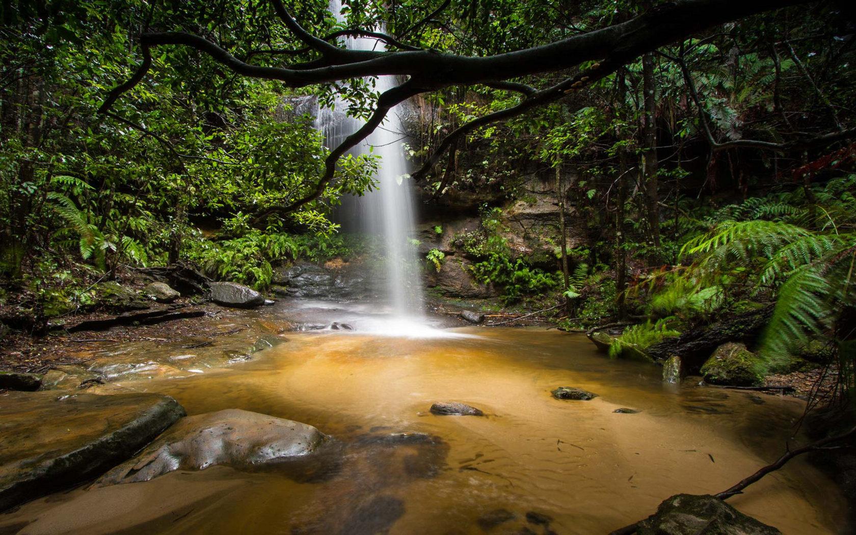Niagara Falls Wallpaper Free Download Beautiful Waterfall Deep In The Jungle Adeline Falls South