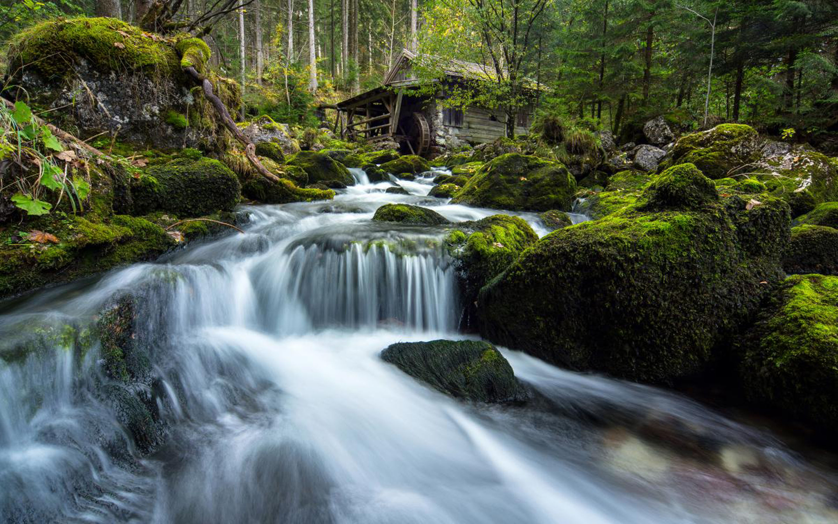 Historic Mill In Golling Salzburg Mountain River Waterfalls Rocks With Green Moss Pine Trees
