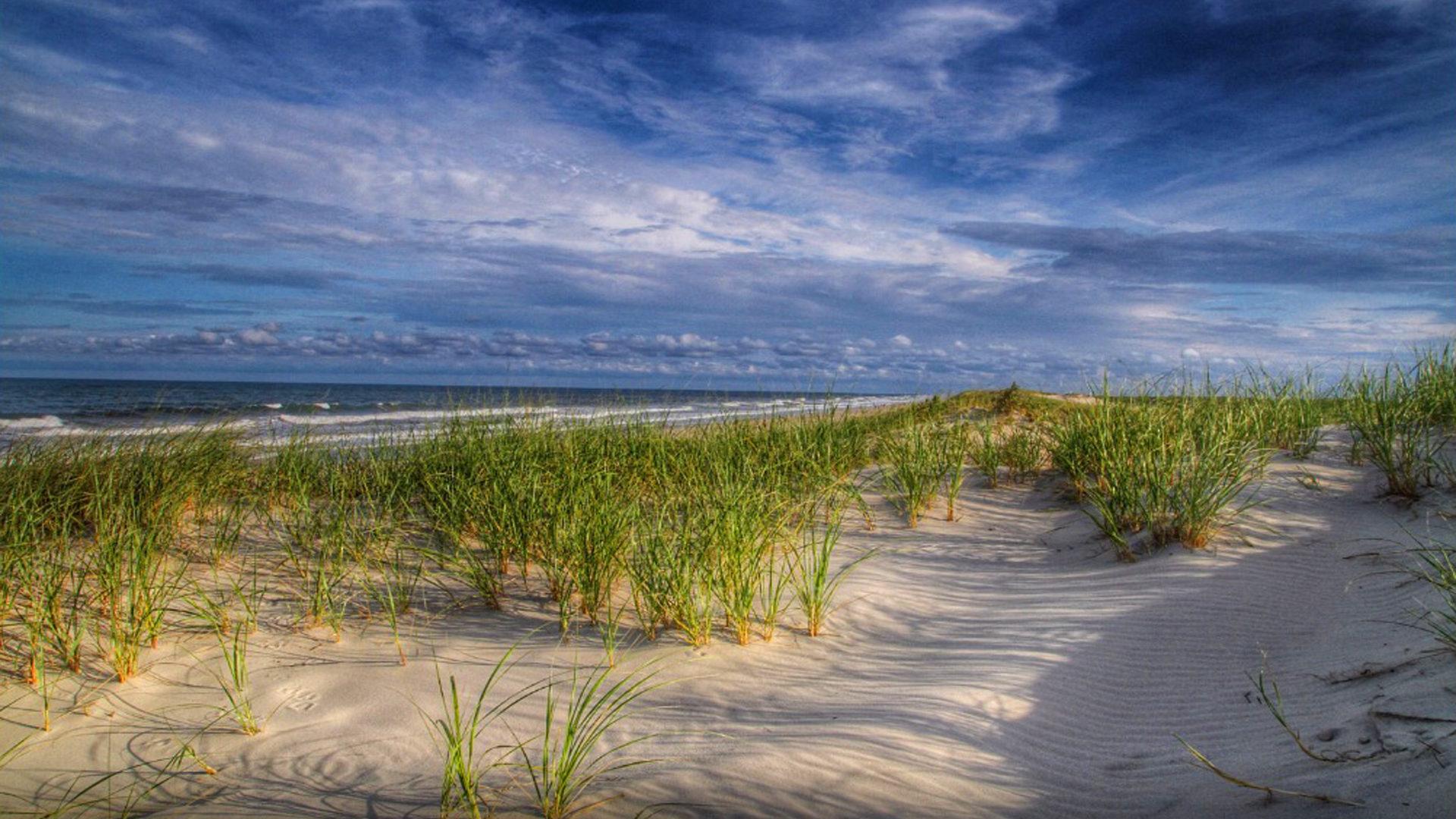 Iphone X Sand Wallpaper Island Beach State Park New Jersey Summer Beach Grass