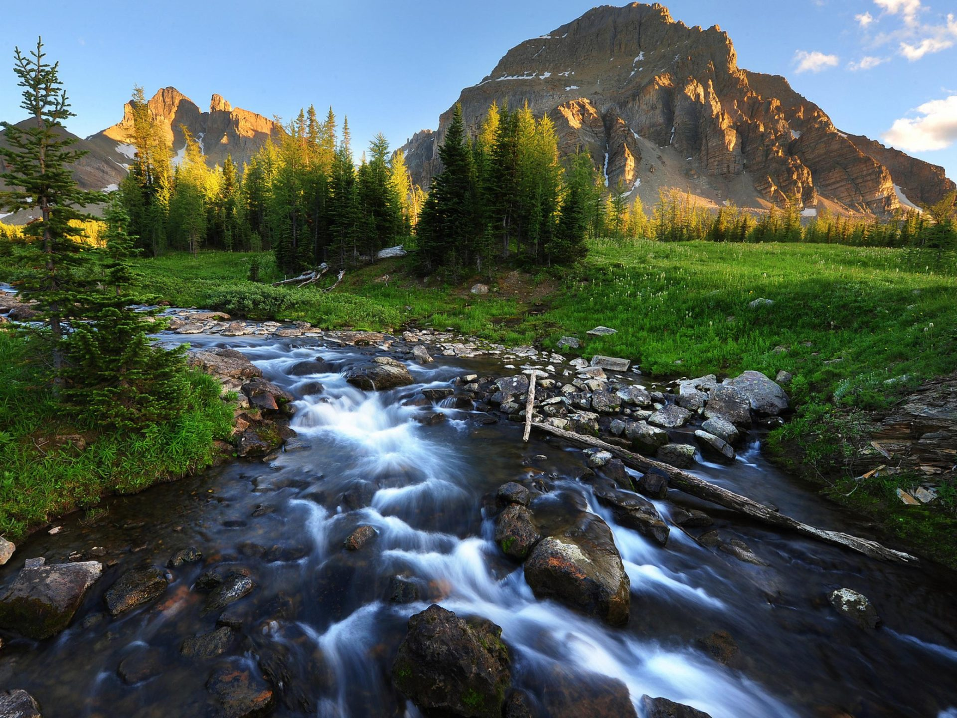 Fall Aspens Wallpaper Small Mountain River Stones Gravel Meadow With Green