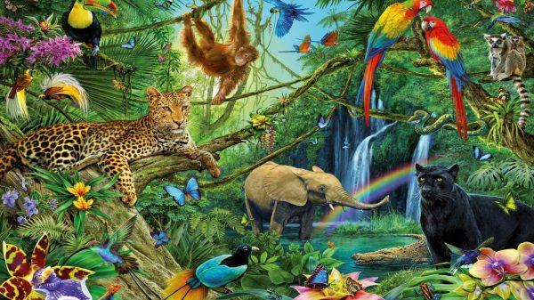 Animal Kingdom Dwellers Of The Jungle Desktop Backgrounds Free Download For Windows ...