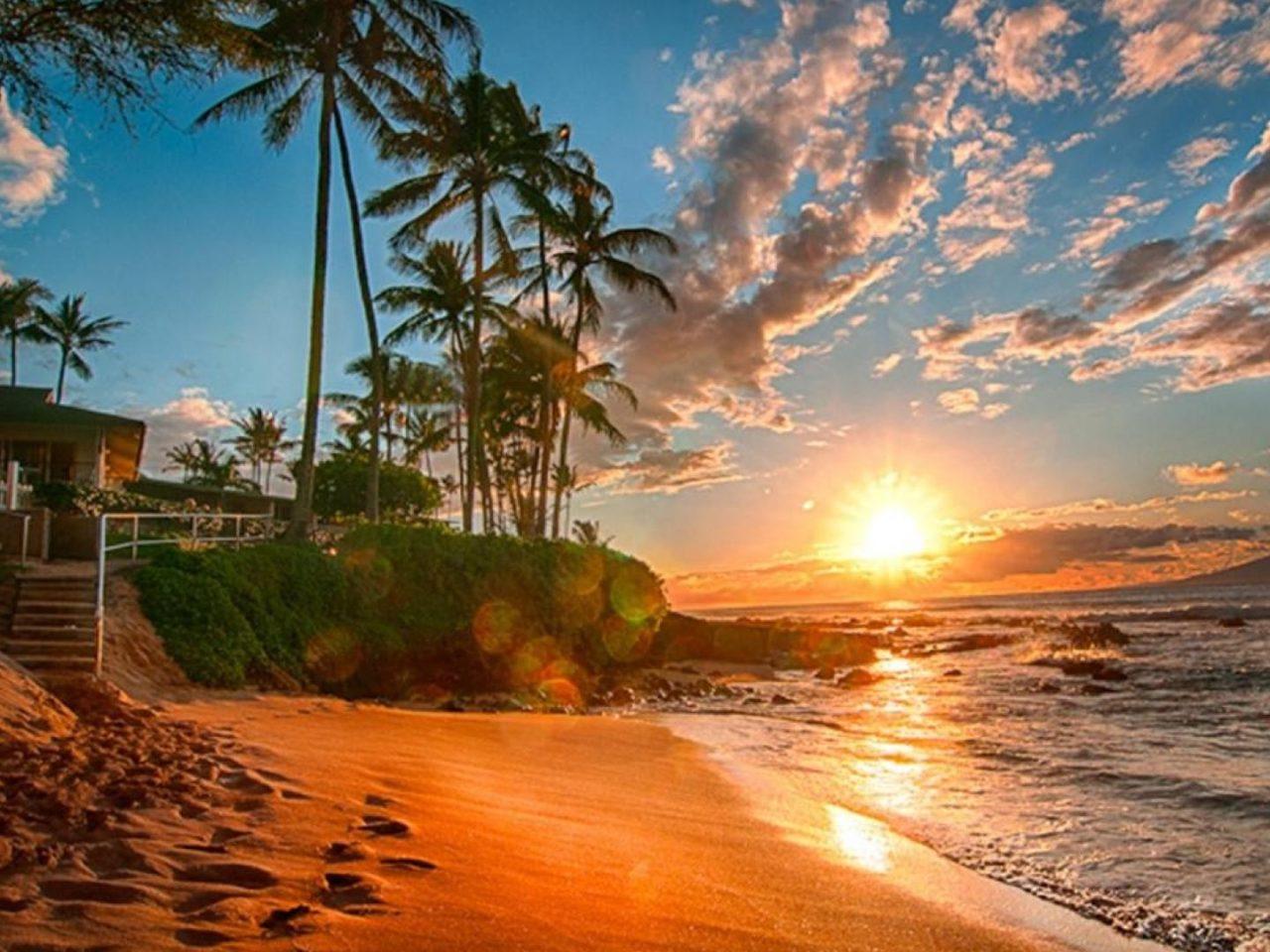 Iphone X Lock Screen Wallpaper Hawaii Exotic Wallpaper Hd Sea Sand Beach Palms Green Sky