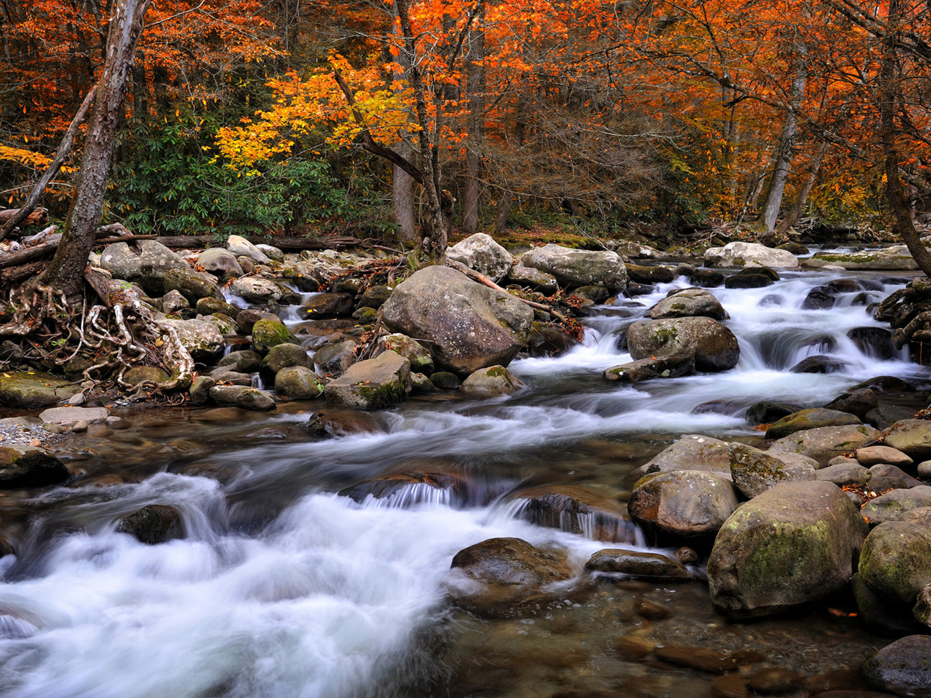 Fall Pc Wallpaper Free Beautiful National Parks In America Great Smoky Mountains
