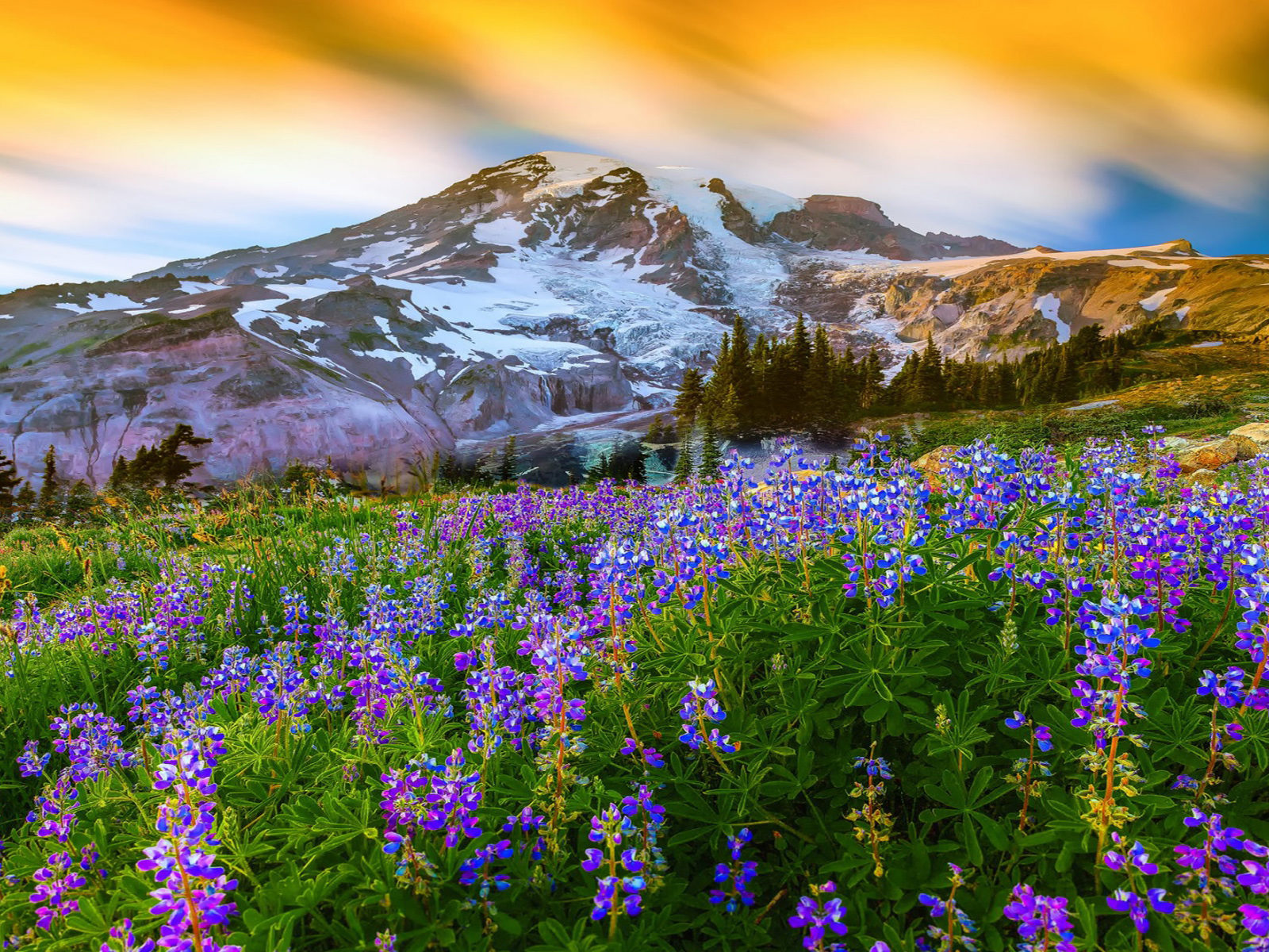 Wallpapers For Desktop Fall Colors Beautiful Spring Landscape Nature Flowers Mountain Snow
