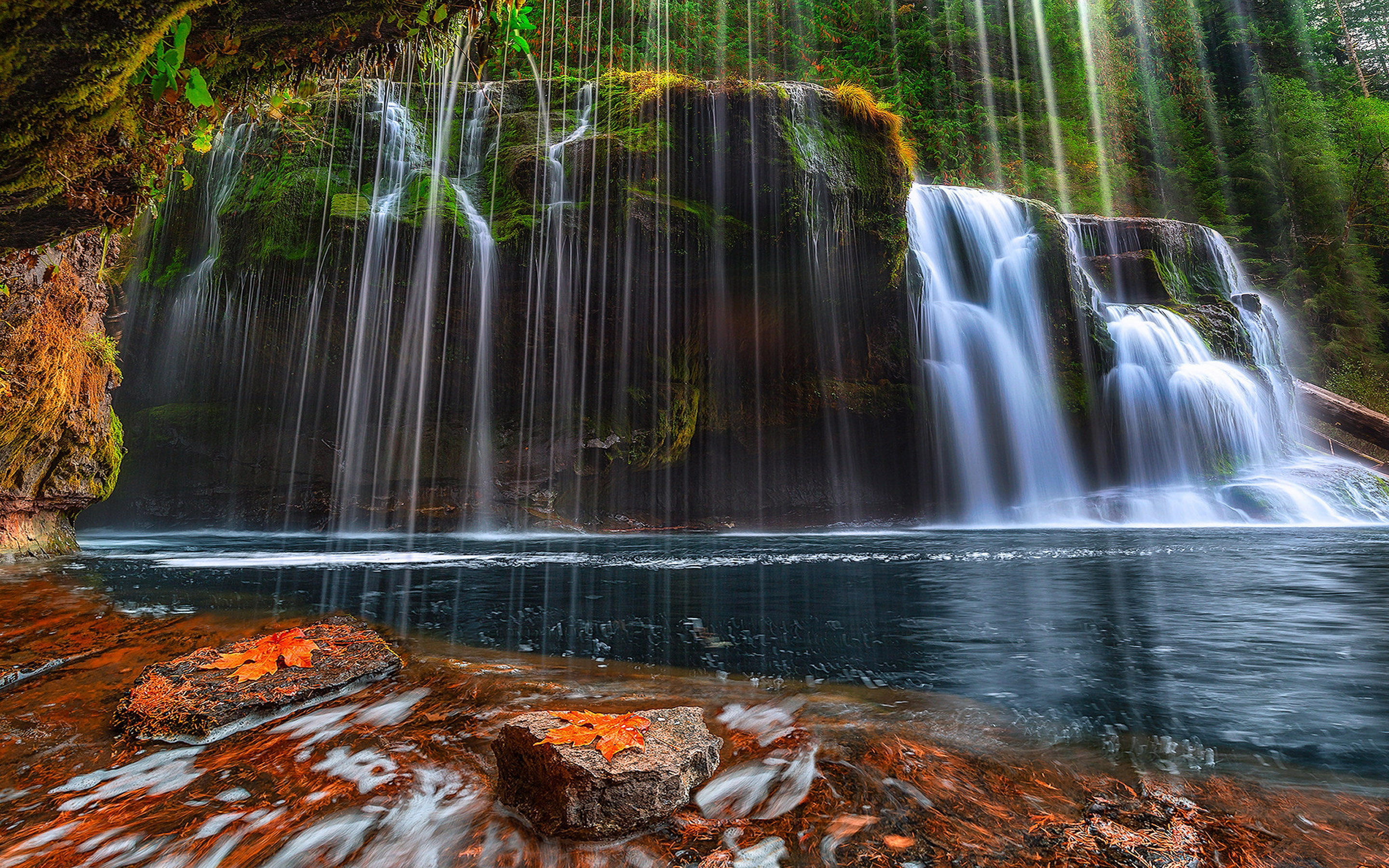 Fall Flowers Desktop Wallpaper Lower Lewis River Falls Gifford Pinchot By Forest