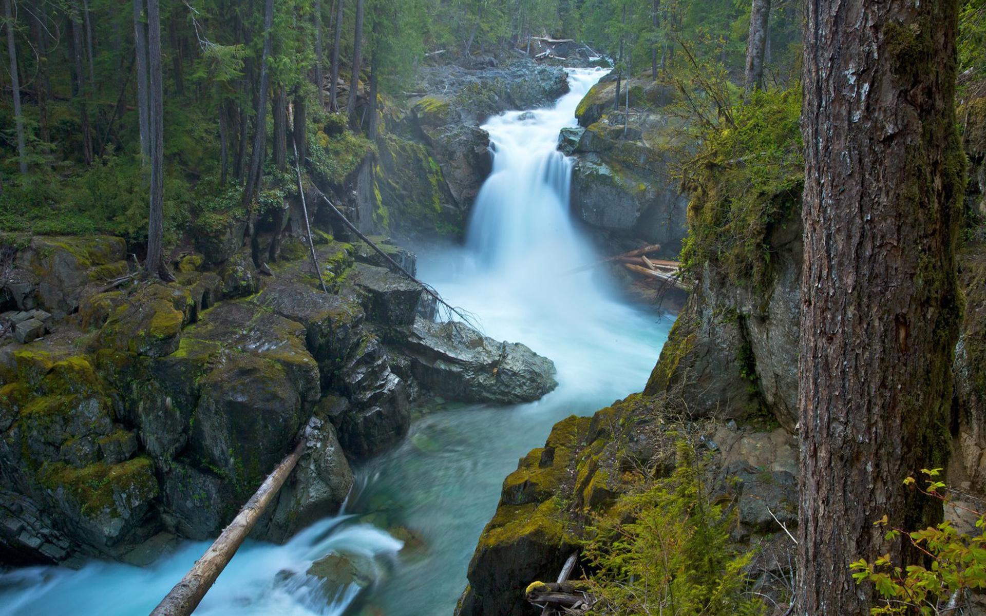 Hd Niagara Falls Wallpaper Mount Rainier National Park Usa Silver Falls Ohanpecosh