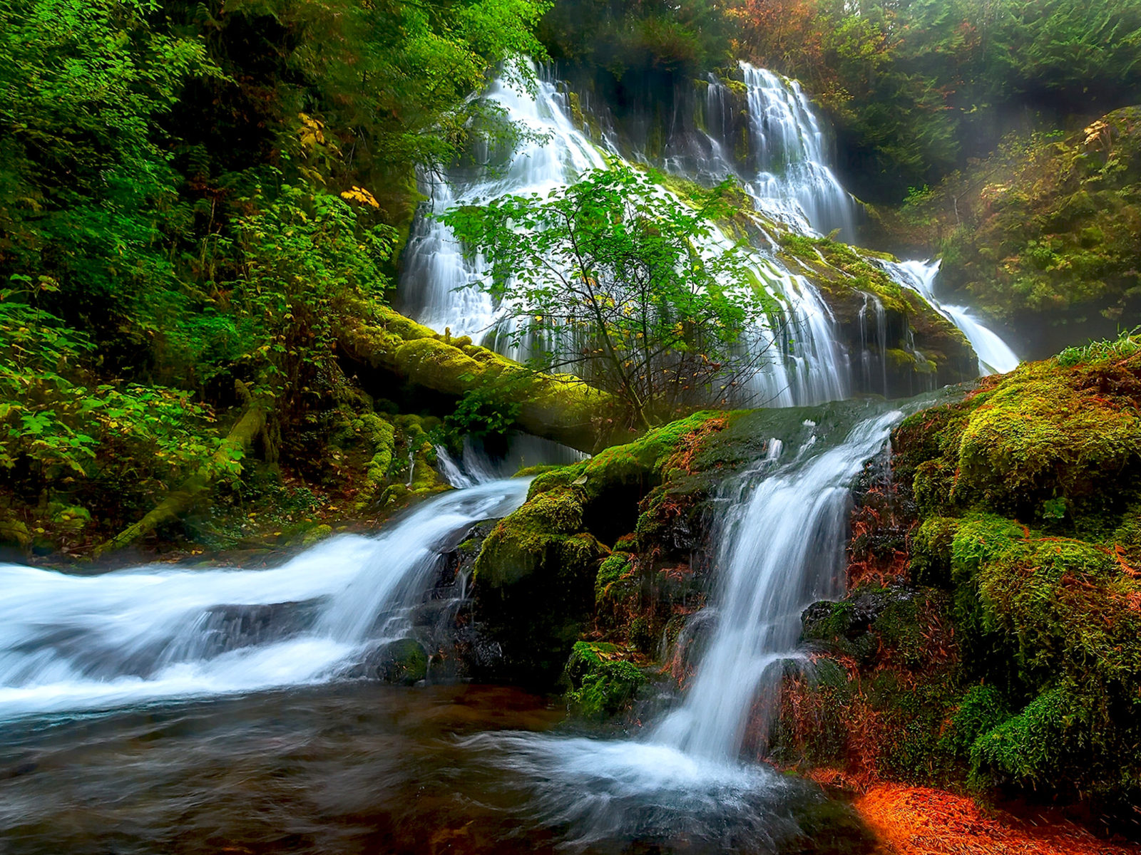Can You Get Moving Wallpapers For Iphone X Natural Beauty Panther Creek Falls Columbia River District