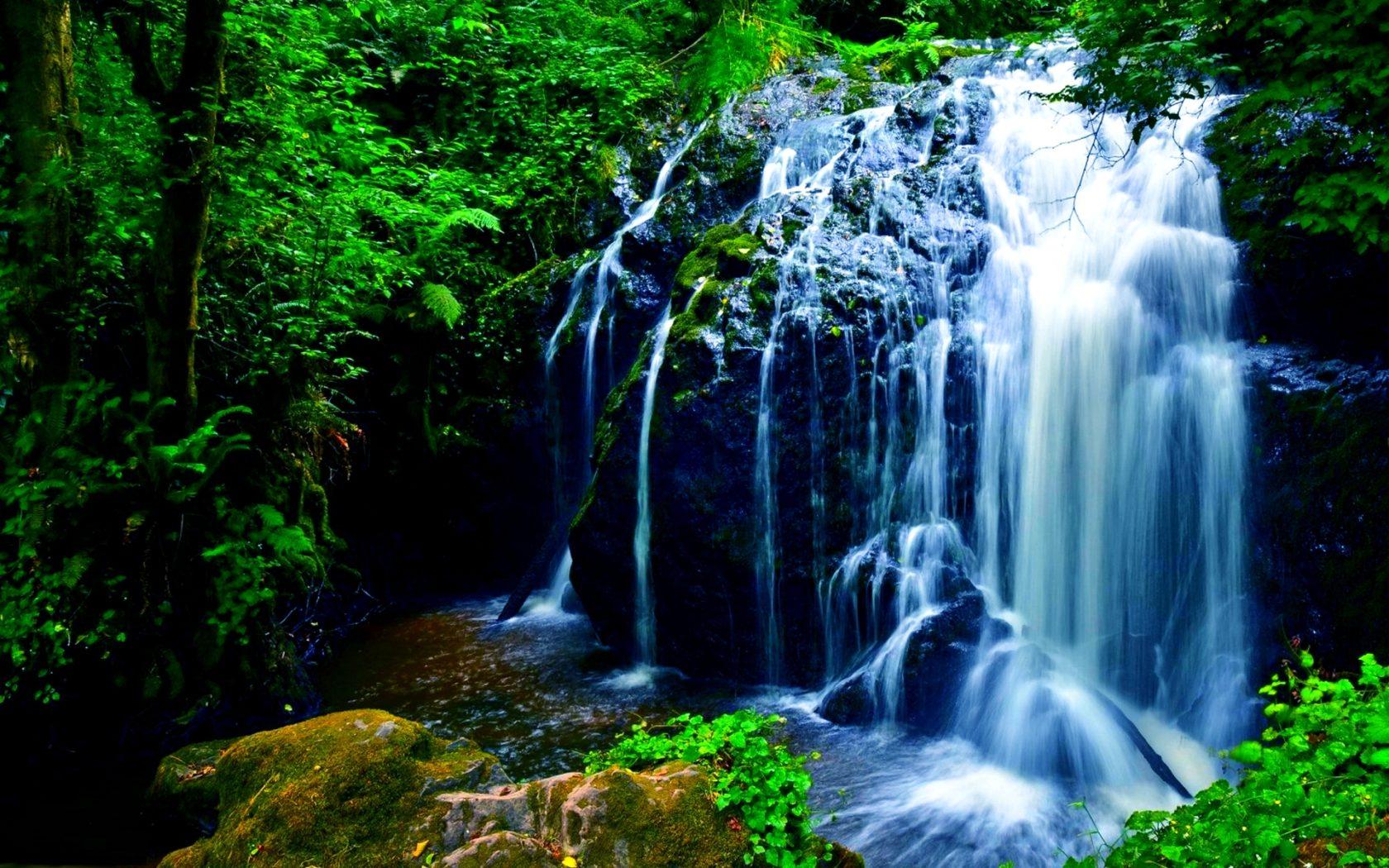 Fall Wallpaper And Screensavers For Free Nature Beautiful Waterfall Green Noise Rock Fern Green