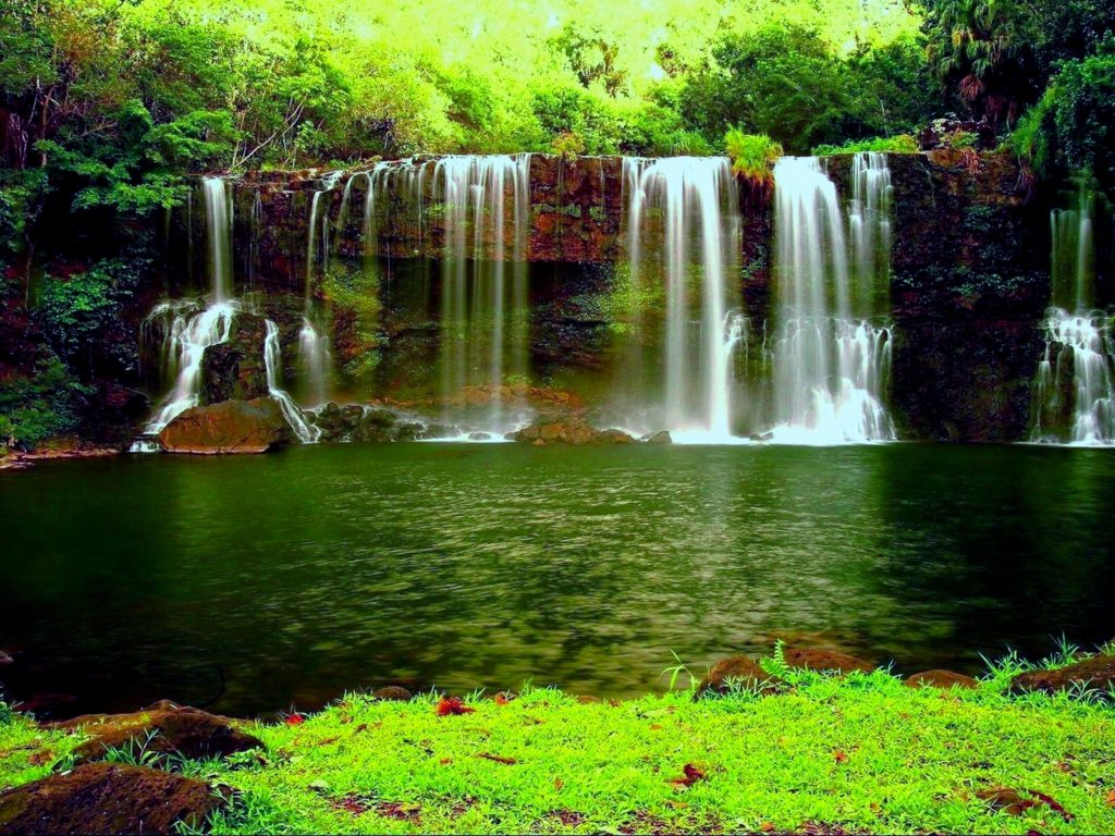 Iphone 5 Panorama Wallpaper Waterfall In The Thick Green Forest River Pond Weed Hd