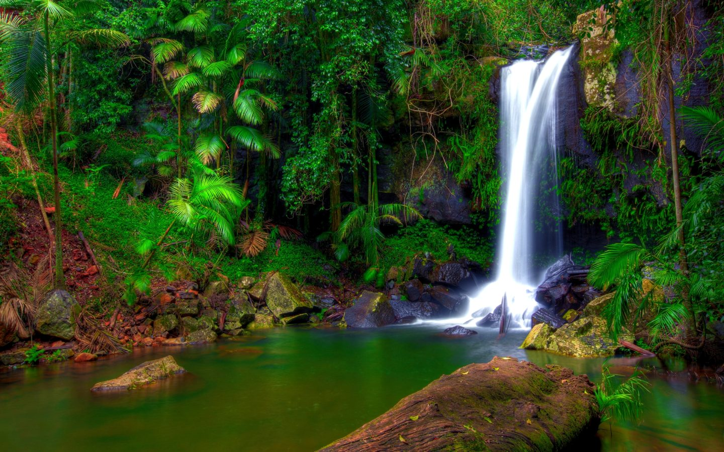 Free Desktop Wallpaper Fall Trees Wonderful Tropical Waterfall Jungle Green Tropical