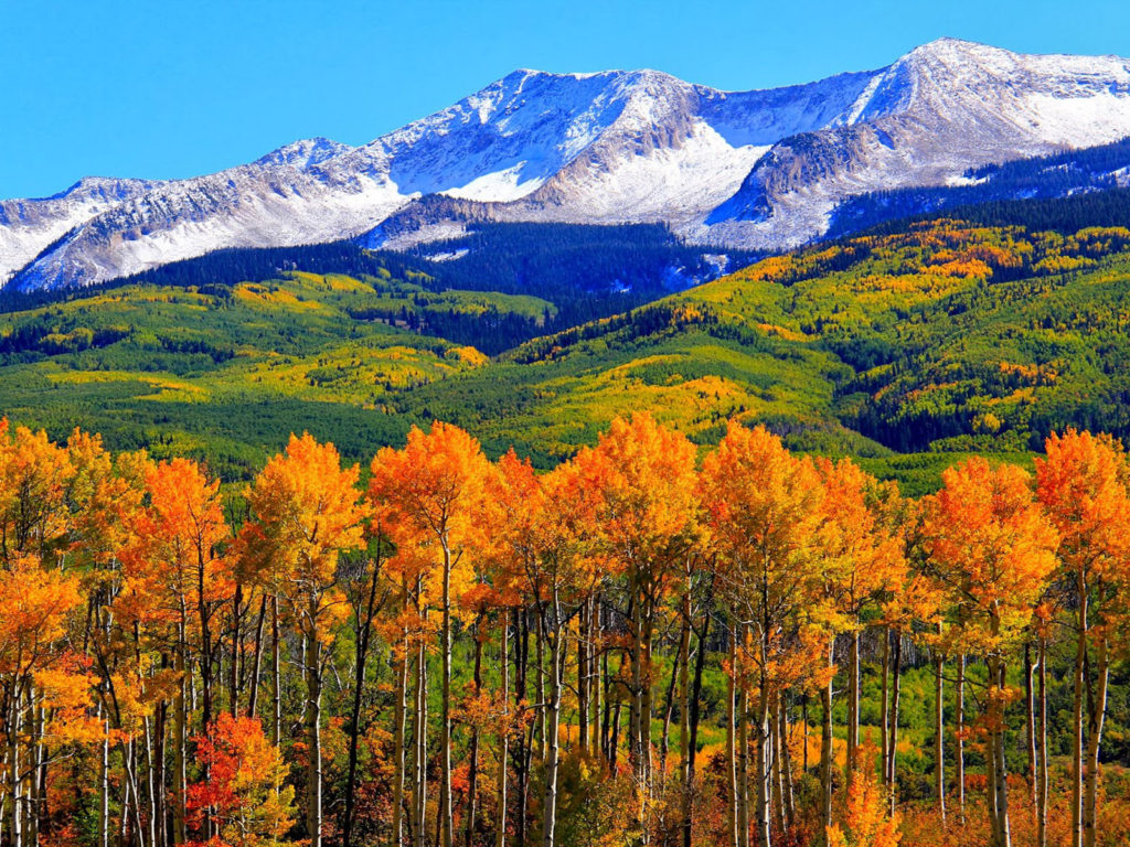 Free Fall Wallpapers 1024x768 Autumn Colorado Fall Snowy Mountains Nature Landscape Hd