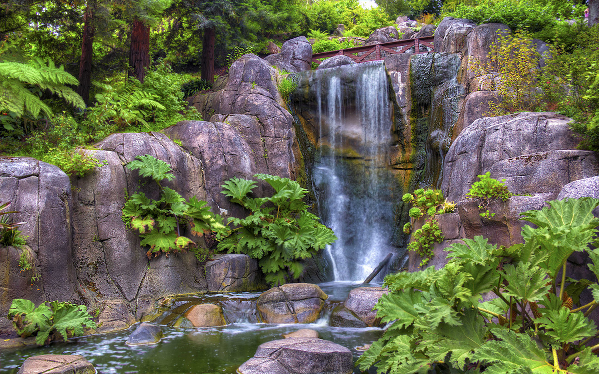 Free Fall Wallpaper For Computer Golden Gate Park Strawberry Hill Waterfall San Francisco
