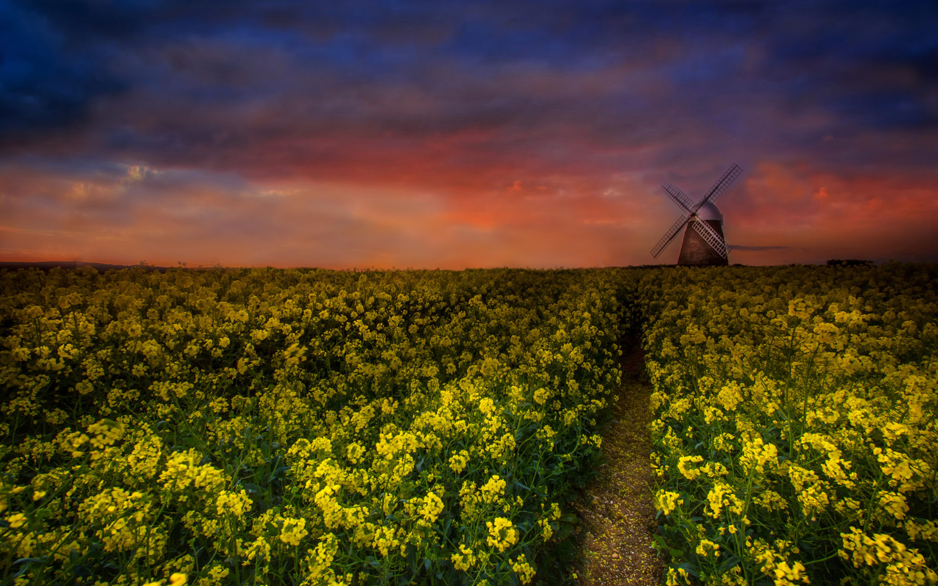 Fall Computer Screen Wallpaper Sunset Landscapes Windmill Canola Oilseed Rape Desktop