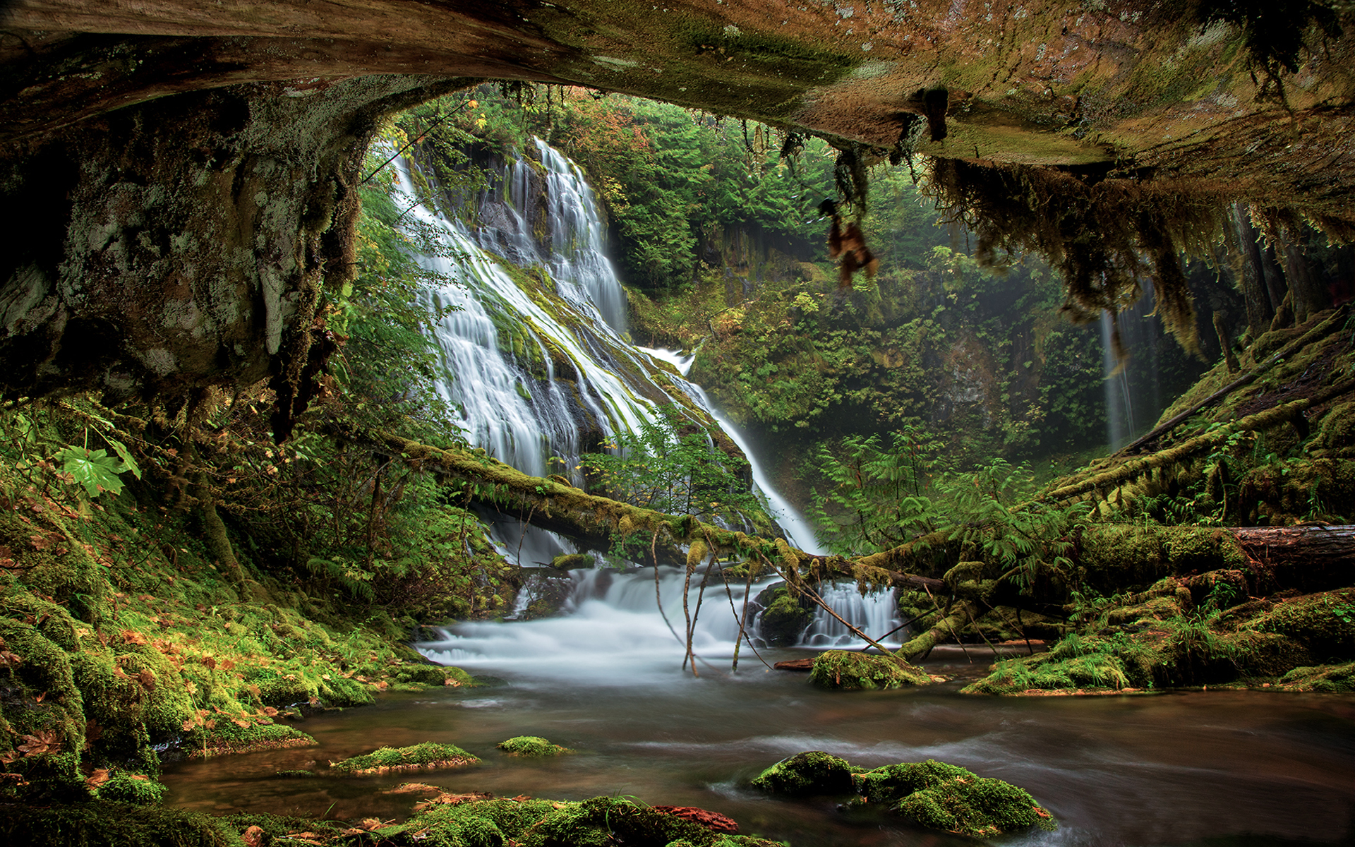 Free Early Fall Wallpaper Columbia River Gorge Panther Creek Falls Oregon Lanscape