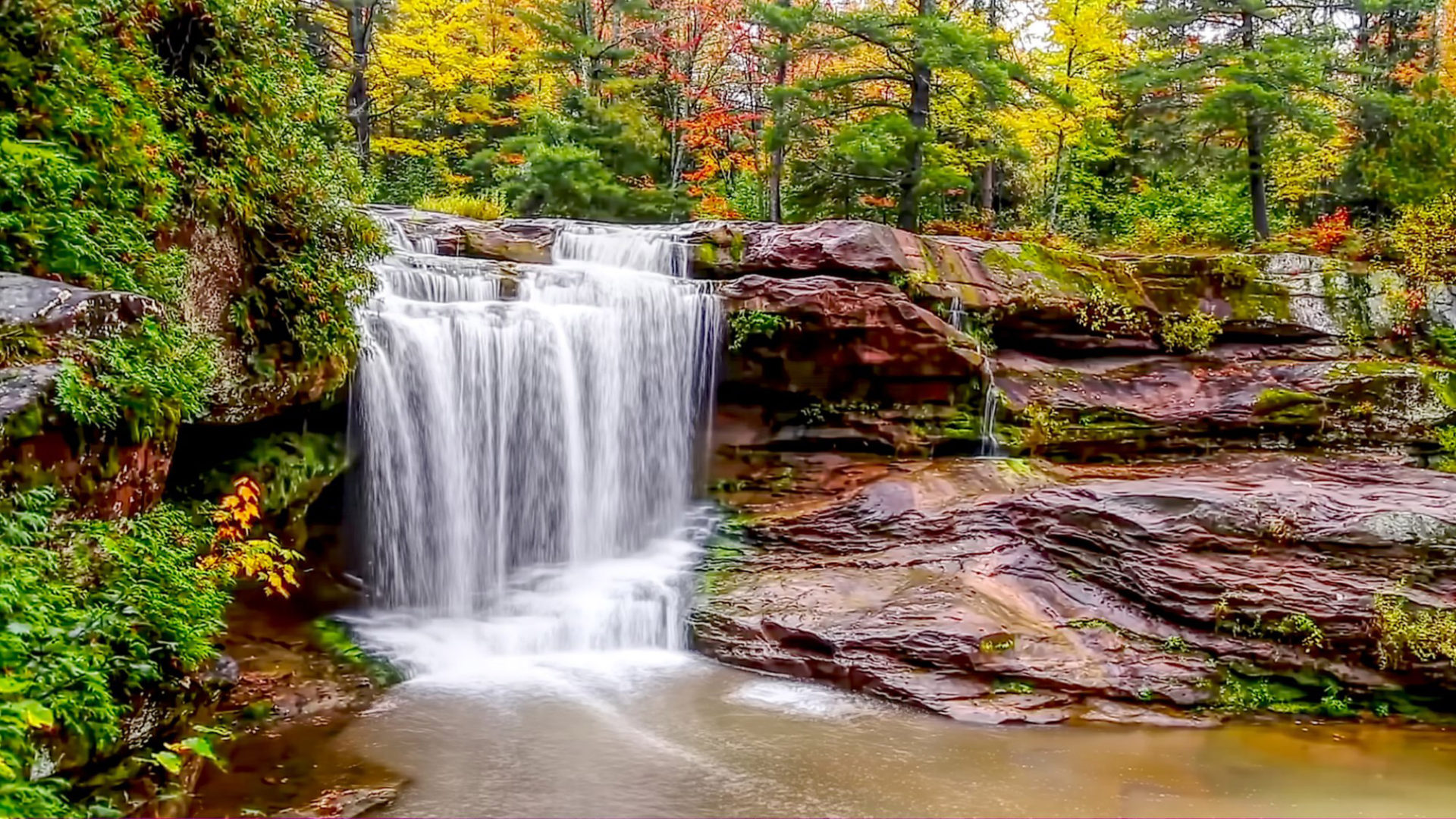 Fall Wallpapers For Tablet Stream Cascade Forest Falls Brown Rocks Surrounded By