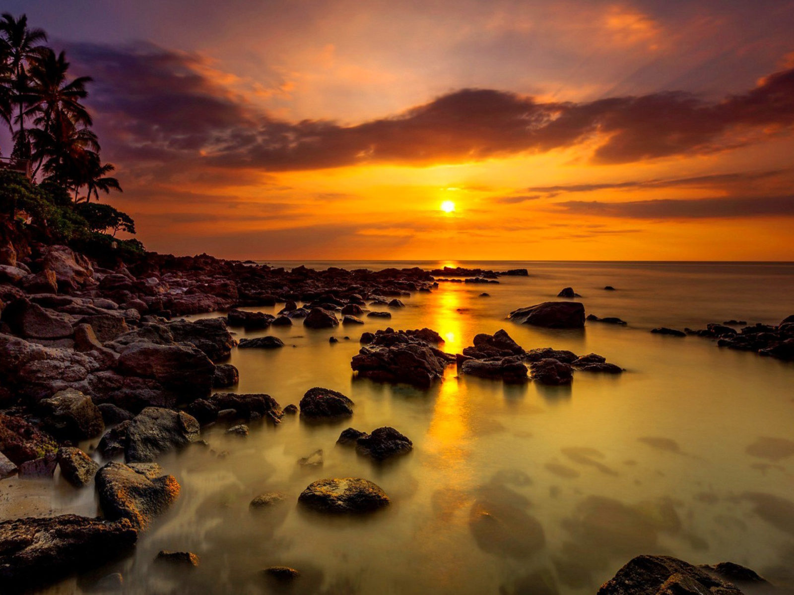 Nice Wallpaper For Iphone 5 Sunset Tropical Sea Coast Palm Rocks Stones Sky With
