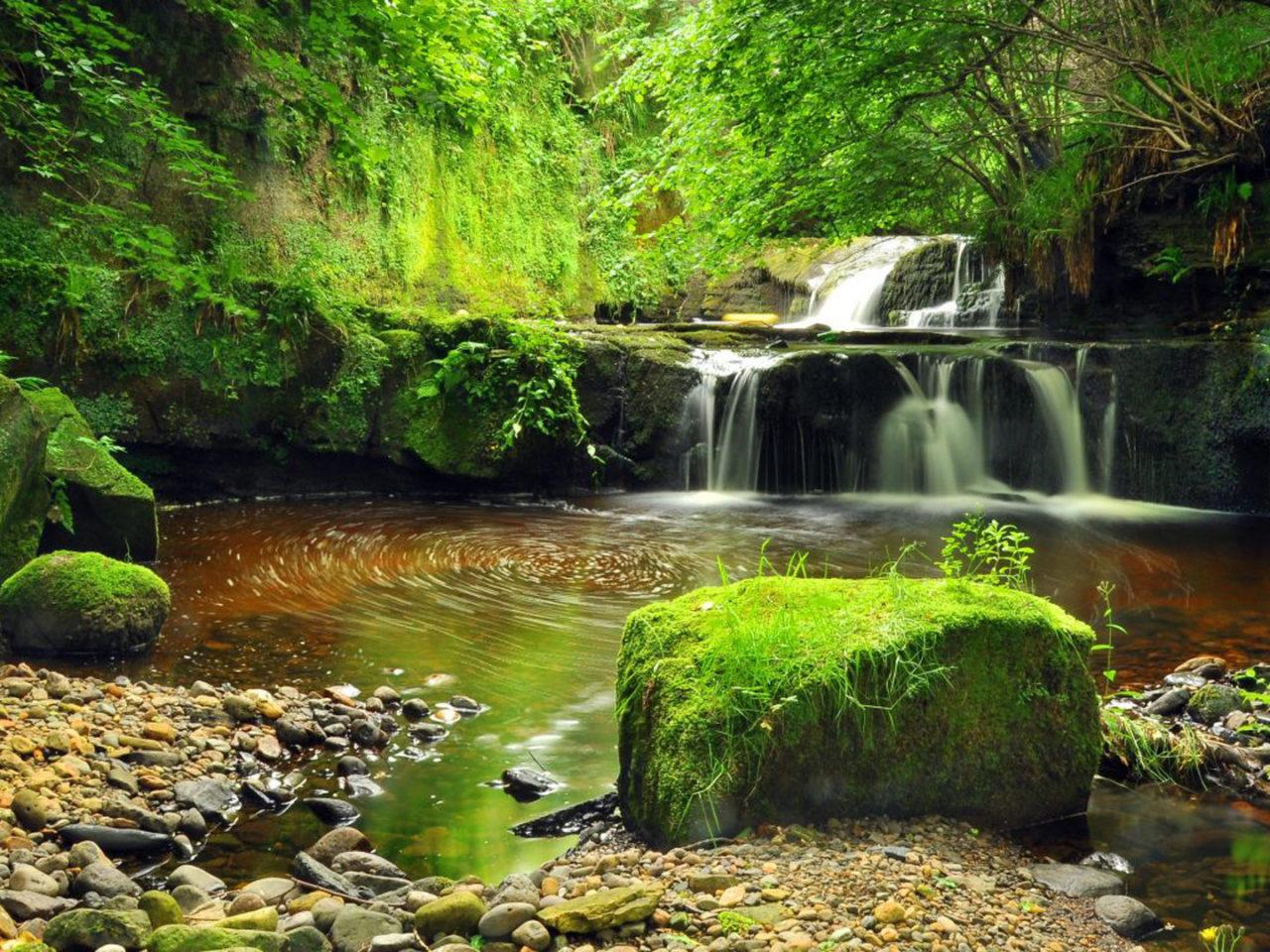Bordered Iphone X Wallpaper Waterfall Stream Pond Cascades Gravel Rocks Green Moss