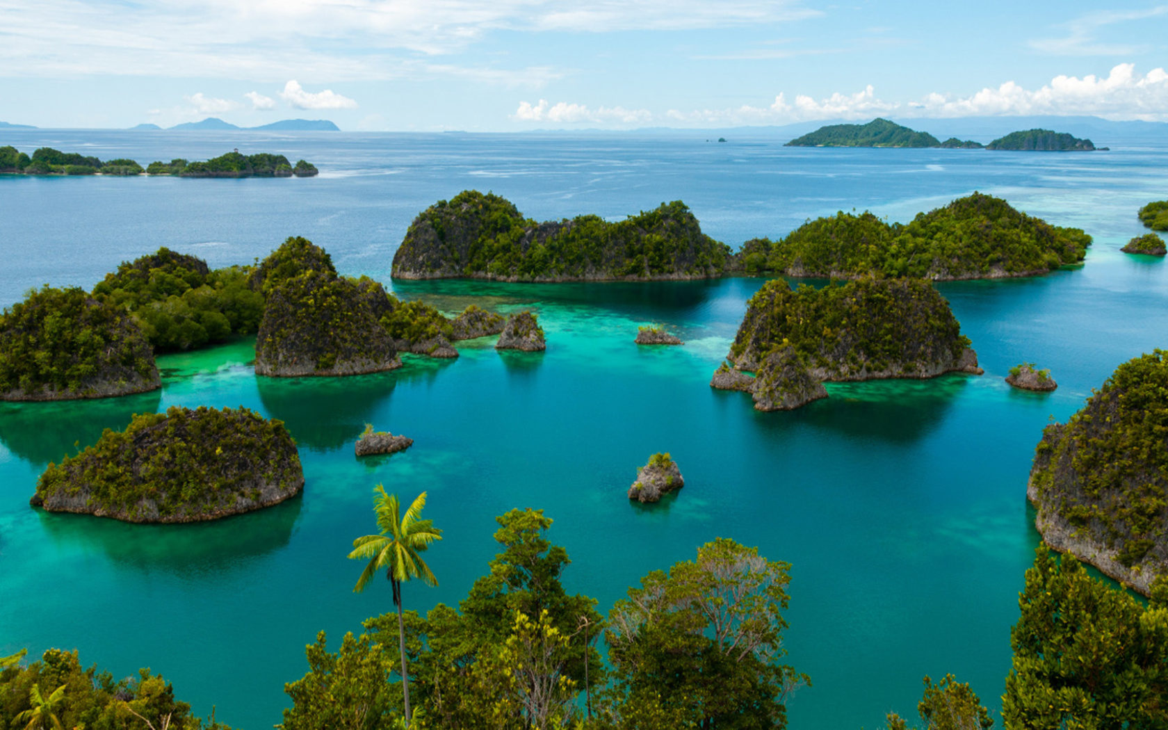 Free Fall Wallpaper For Android Scuba Diving In Raja Ampat Indonesia Tropics Islands Is