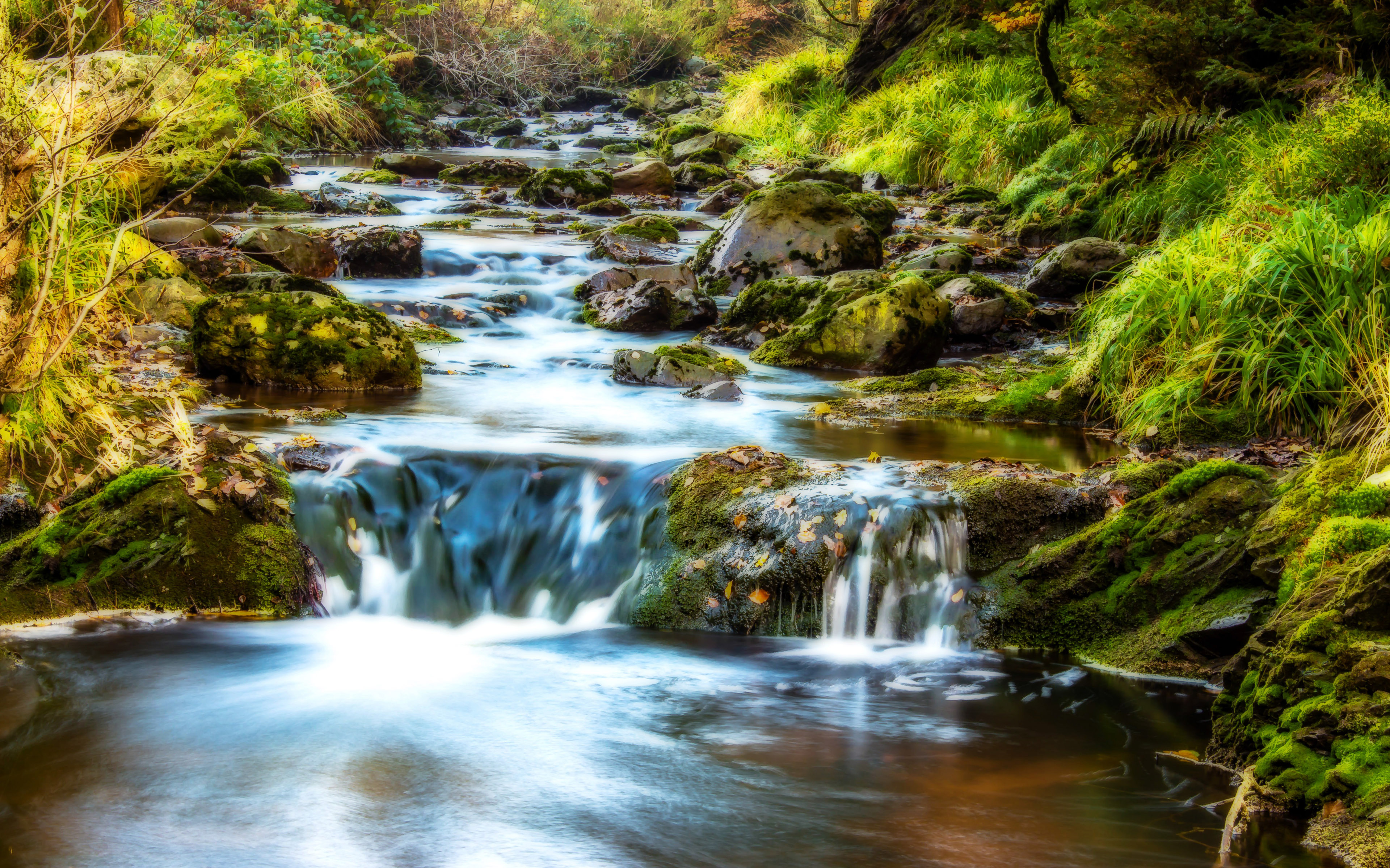 Animated Waterfalls Wallpapers Free Download Mountain Stream Water Rocks Rocks Green Moss Grass Forest