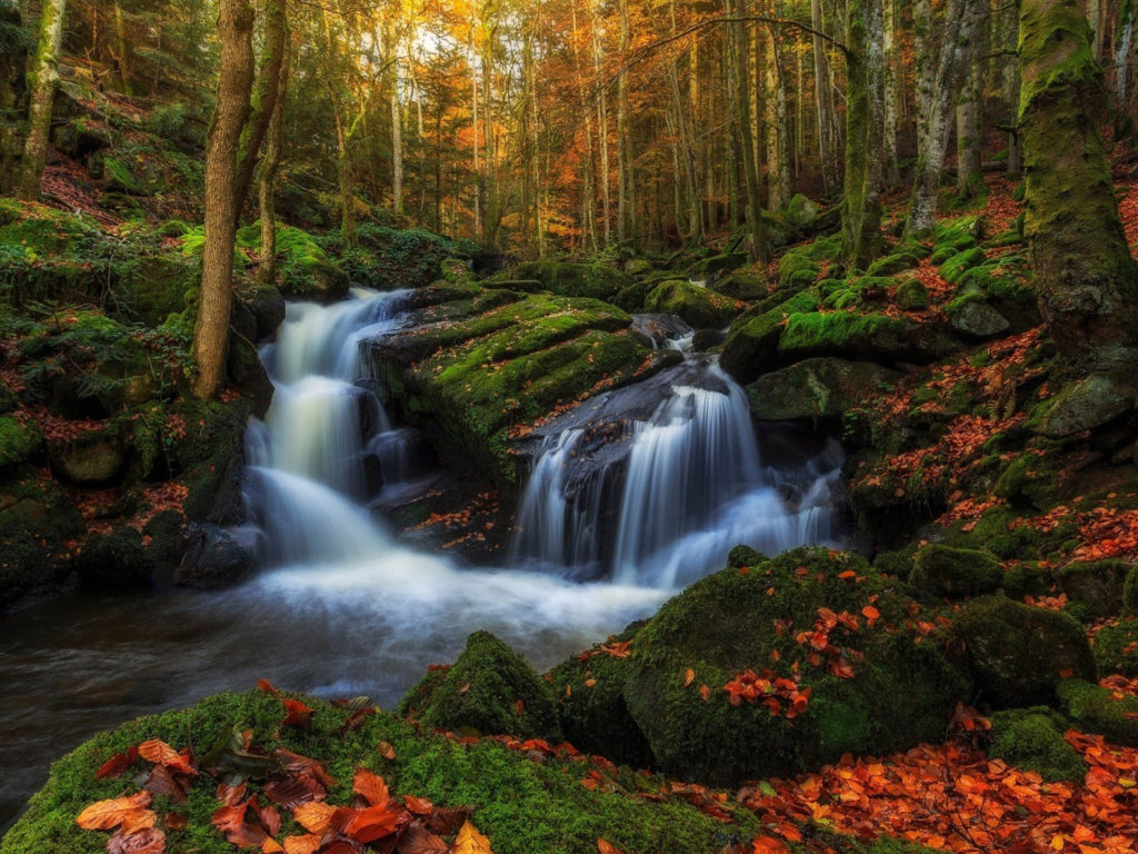 Angel Falls Hd Wallpaper Volon Vill France November Autumn Rocks With Green Moss