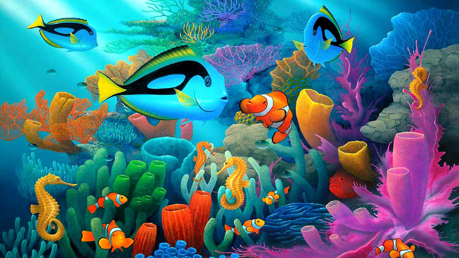 Iphone X Colour Wallpaper Underwater Animal World Coral Reef Coral In Various Colors