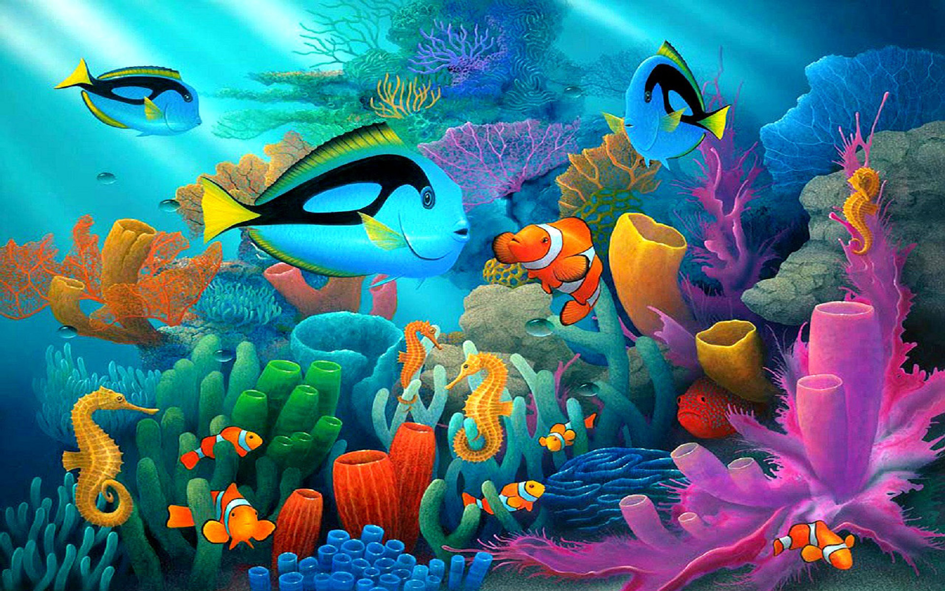 Beautiful Animal Pictures Wallpaper Underwater Animal World Coral Reef Coral In Various Colors
