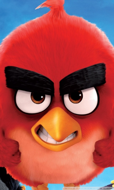 Wallpaper Phone Quotes Download Angry Birds Hd Wallpapers For Mobile Gallery