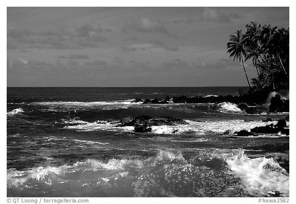 Free Fall Season Wallpapers Download Black And White Ocean Wallpaper Gallery