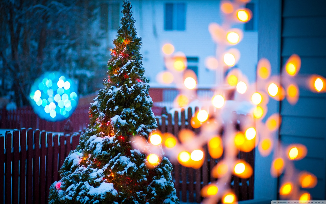 Download Christmas Eve Wallpaper Gallery