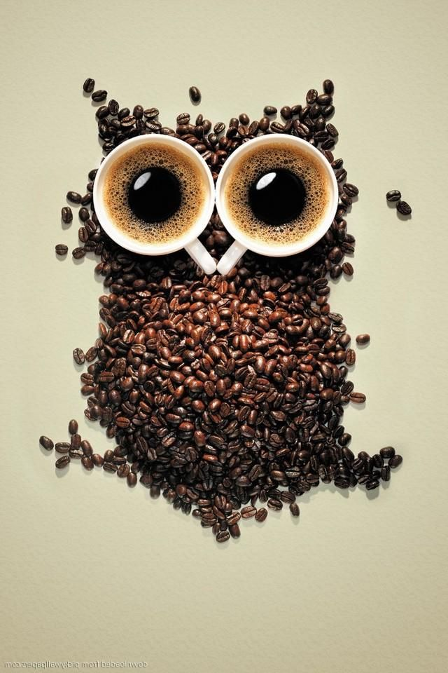 Free Fall Themed Desktop Wallpaper Download Coffee Owl Wallpaper Gallery