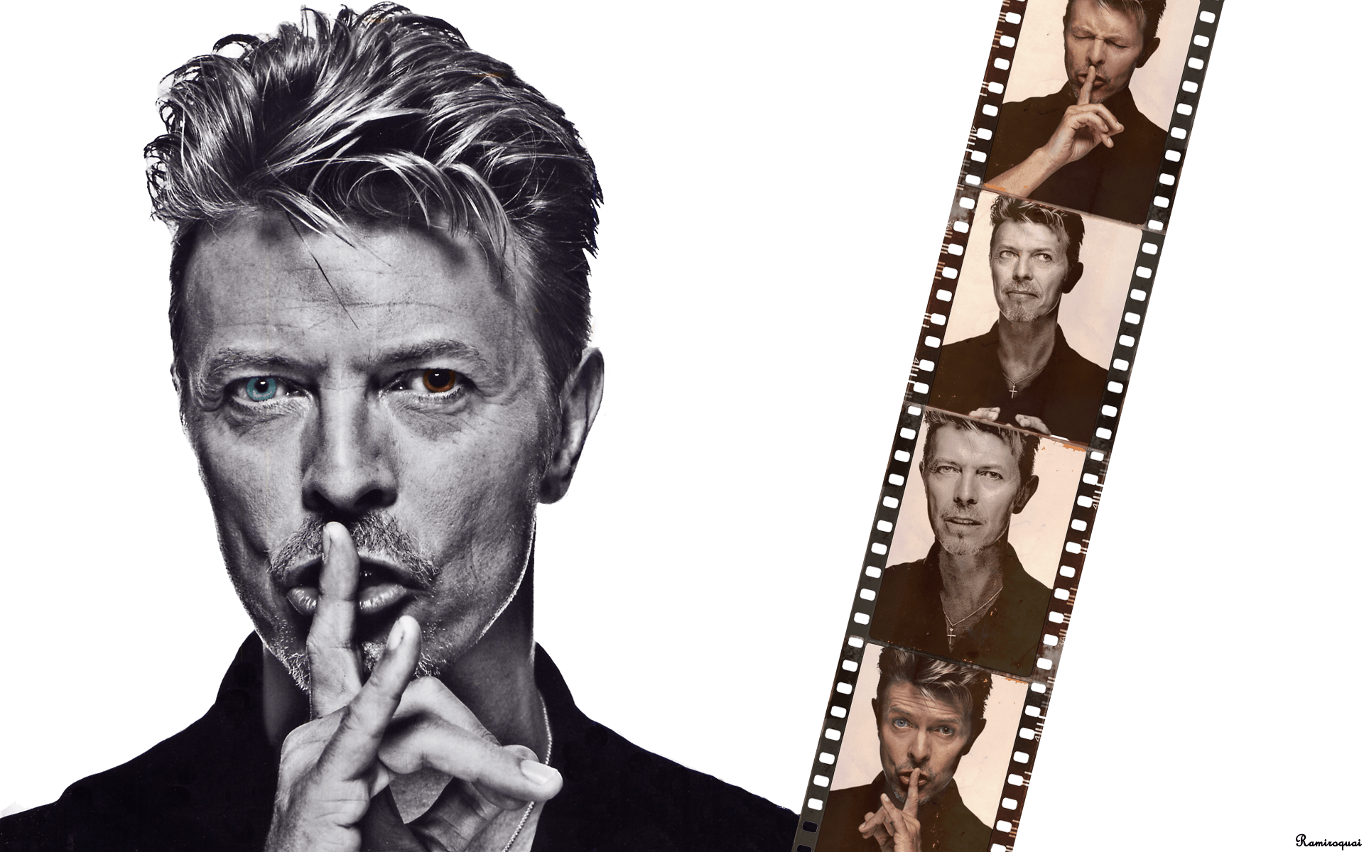 Mamta 3d Name Wallpaper Download David Bowie Wallpaper Design Gallery