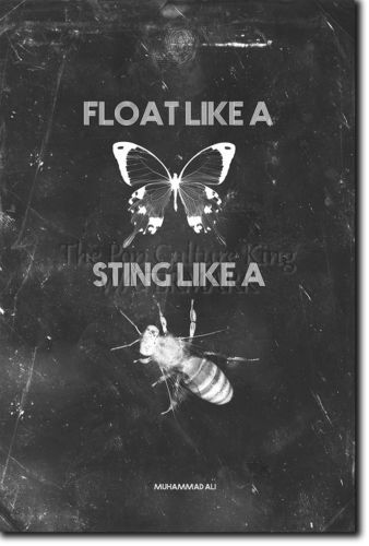 How To Get Live Wallpapers On Iphone 7 Download Float Like A Butterfly Sting Like A Bee Wallpaper