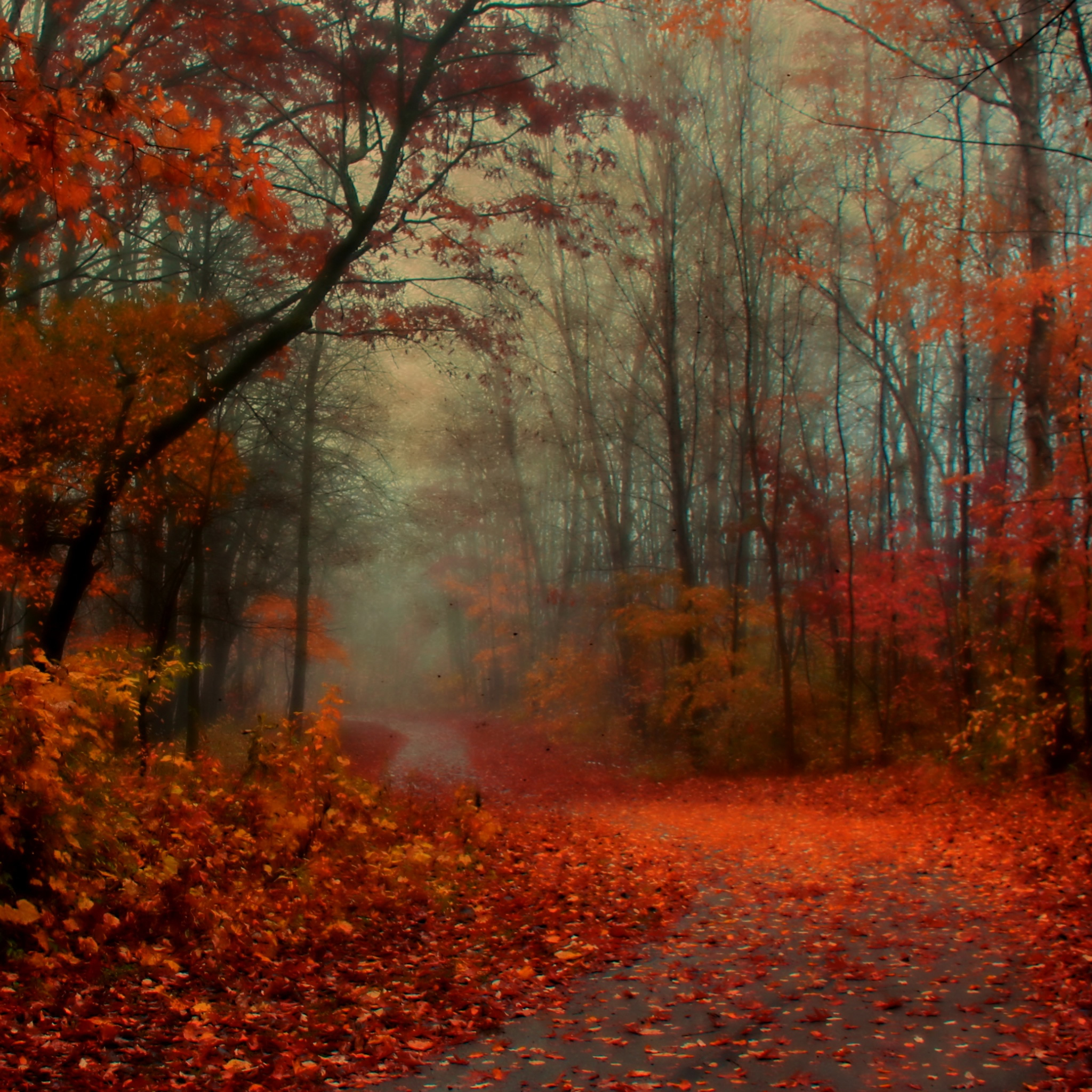New England Fall Wallpaper Free Download Free Fall Wallpaper For Ipad Gallery