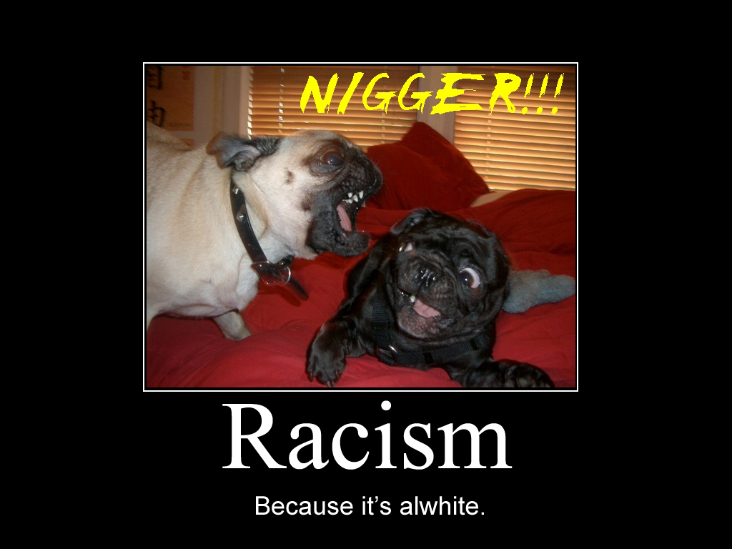 Funny Quotes Wallpapers Download For Mobile Download Funny Racist Wallpapers Gallery