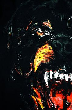 Free Fall Wallpaper For Iphone 5 Download Givenchy Dog Wallpaper Gallery