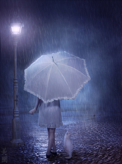 Removable Wallpaper Girls Download Happy Rainy Night Wallpaper Gallery