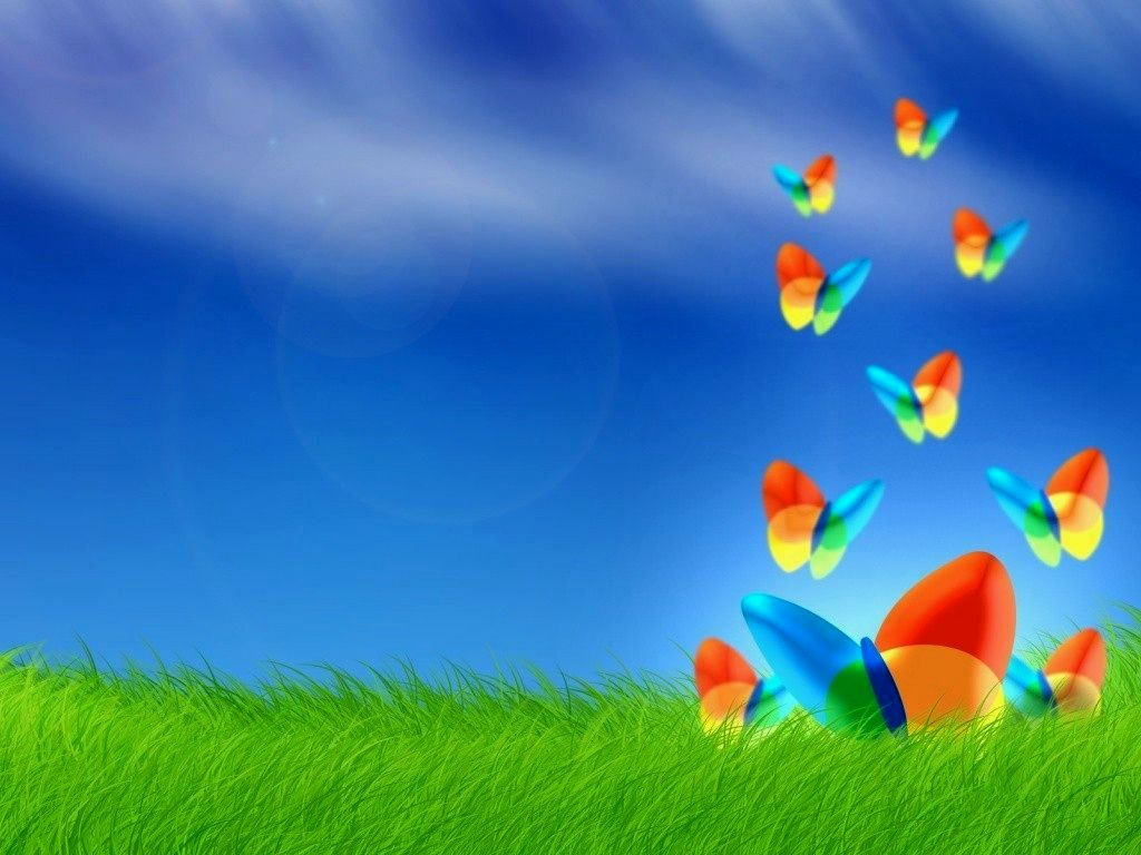 Peacock 3d Wallpaper Download Download Islamic Live Wallpaper For Pc Gallery