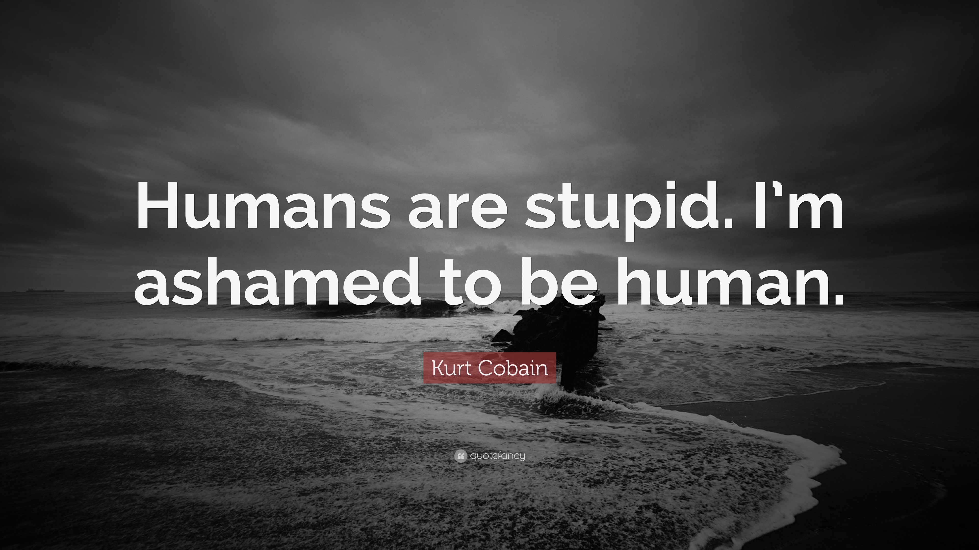 Best Car Live Wallpapers Android Download Kurt Cobain Quotes Wallpaper Gallery