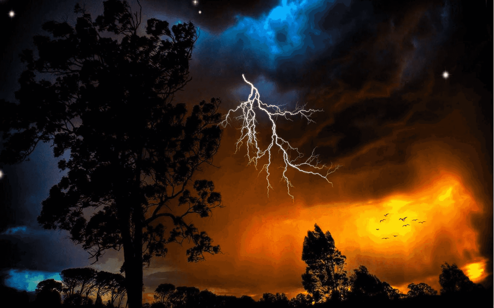 Free Thanksgiving Wallpaper For Iphone Download Lightning Storm Live Wallpaper Gallery