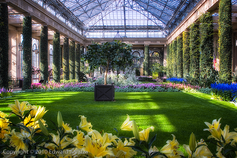 Free Fall Phone Wallpapers Download Longwood Gardens Wallpaper Gallery