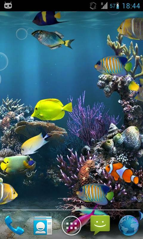 3d Live Wallpapers For Android Phones Free Download Download Moving Fish Wallpaper For Phones Gallery